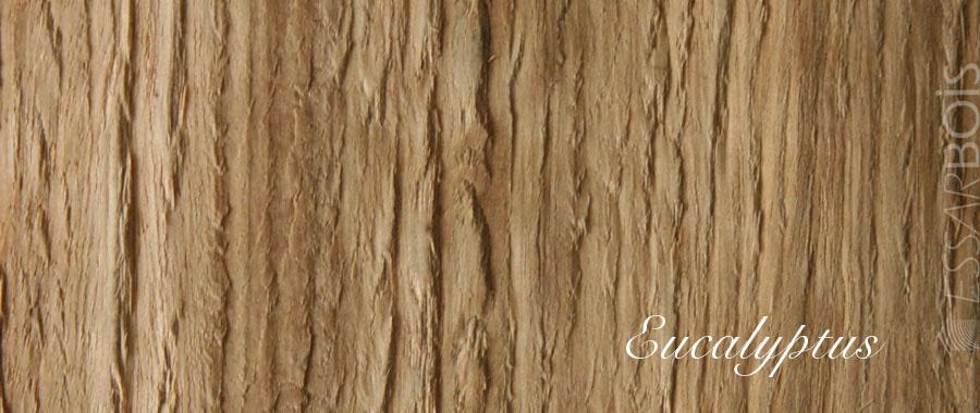 Essence de bois eucalyptus exotique essarbois for Placage de bois exotique