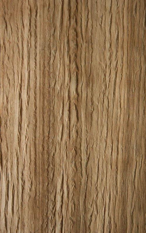 Essence de bois  eucalyptus  exotique  Essarbois