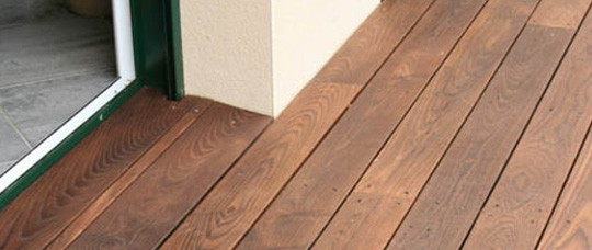Wood Species For Carpenters